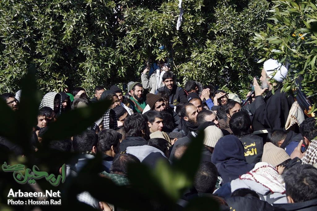 تصاویر سخنرانی حجت الاسلام پناهیان در یکی از موکبهای مسیر کربلا
