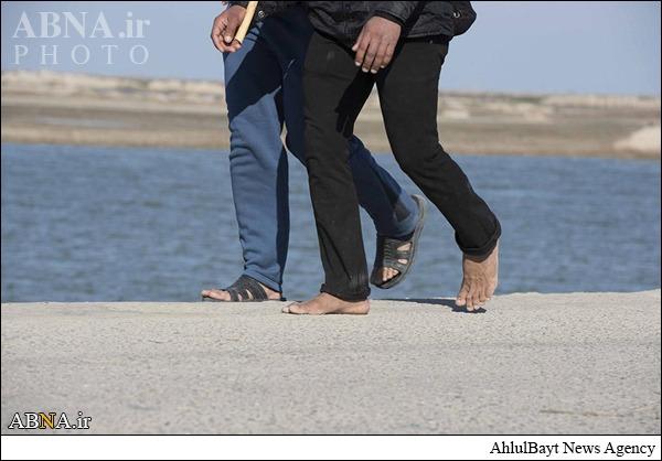 گزارش تصویری/ دستههای پیاده روی اربعین در بخش المدینه و الجبایش